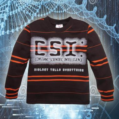 Блуза ластична райе CSI 7