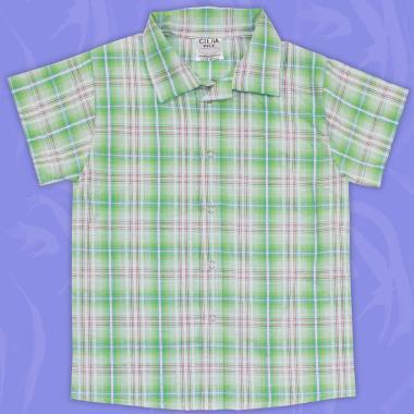 Риза спортно-елегантна каре в резеда